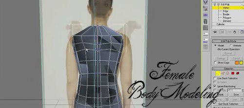 female_body_modeling