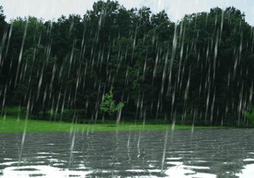 rain_fall_animation
