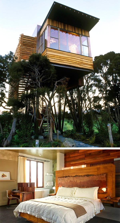 hapuku lodge and tree houses