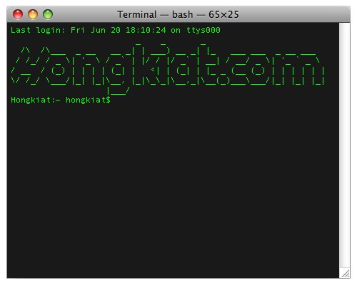 terminal-welcome.jpg
