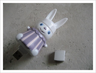 bunny flash drive