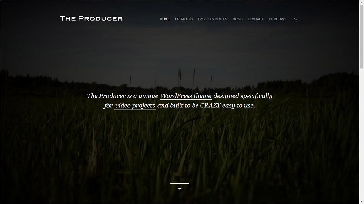 The Producer's demo