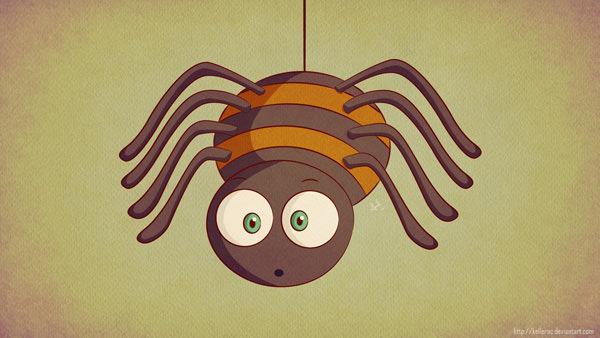 baby-spider