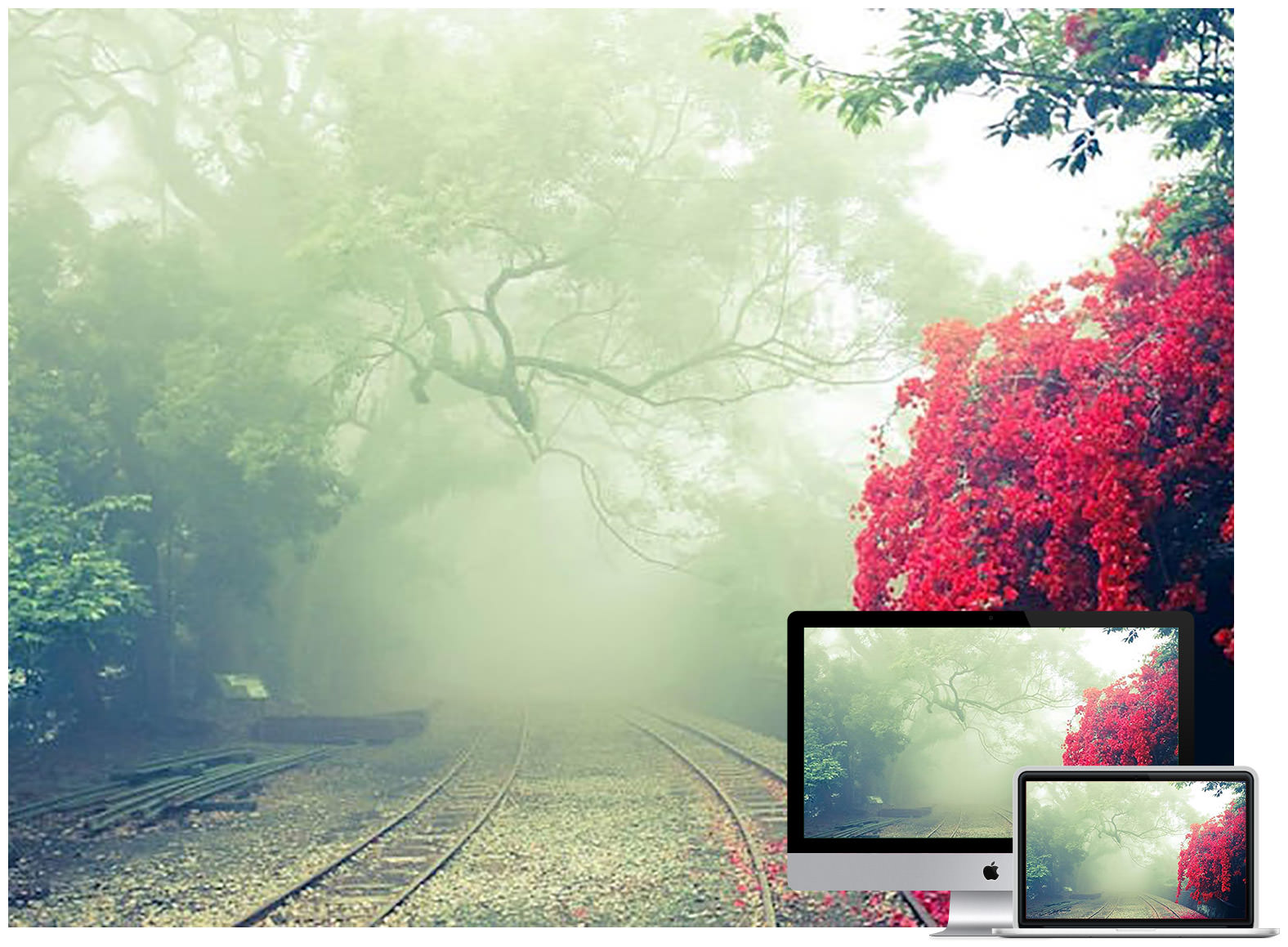 50 Beautiful Nature Wallpapers For Your Desktop Hongkiat