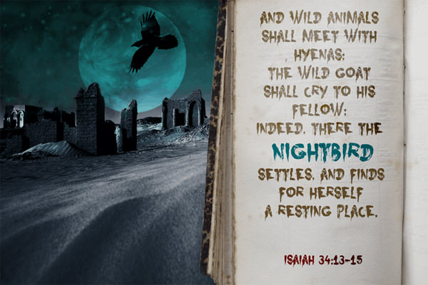 Nightbird halloween fonts