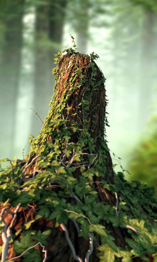 ivy_tree_stump