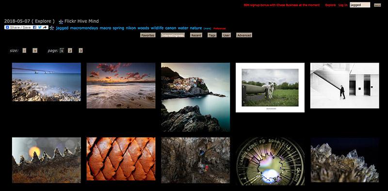 Flickr Hive Mind