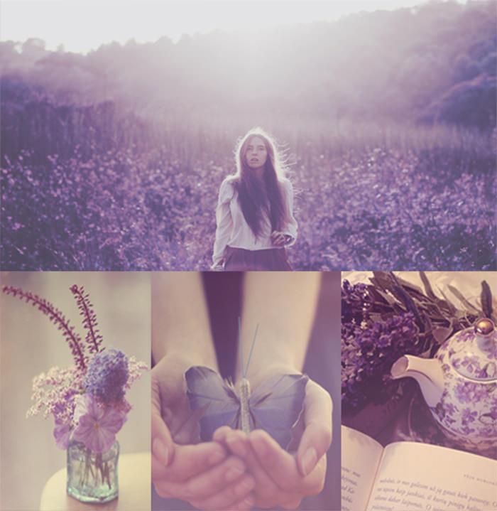 Purple wonderland action