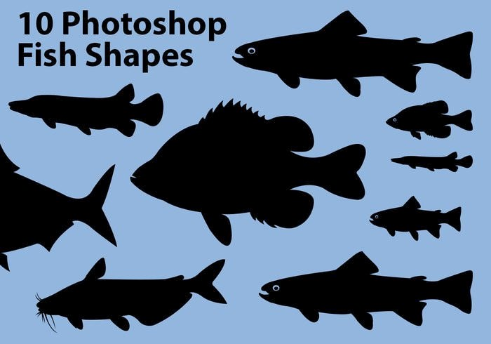 fish-shapes