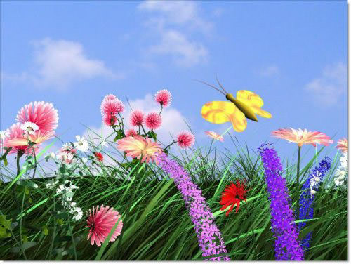 flying_butterfly