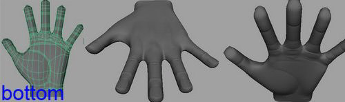 modelling_a_hand