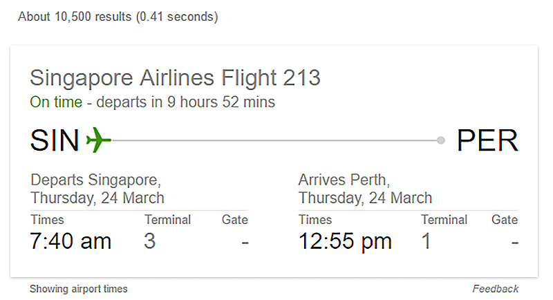 google flight info