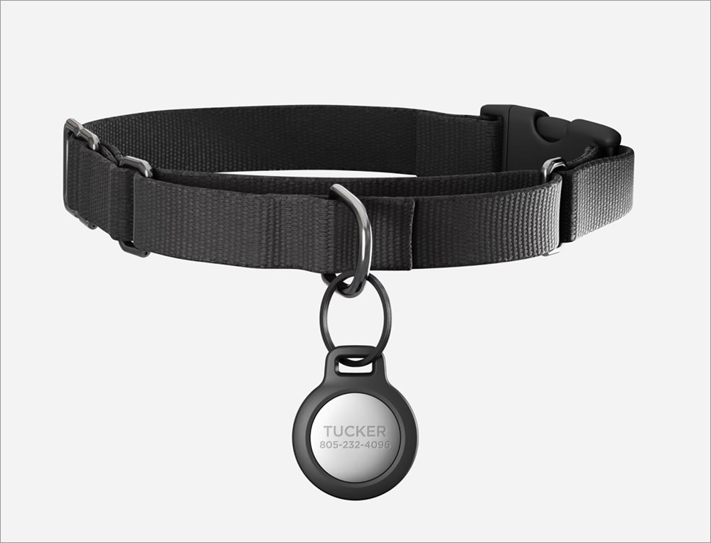 Moment Rugged Pet Tag