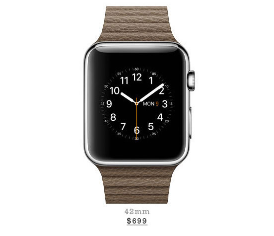 Stainless Steel Case With Light Brown Leather Loop