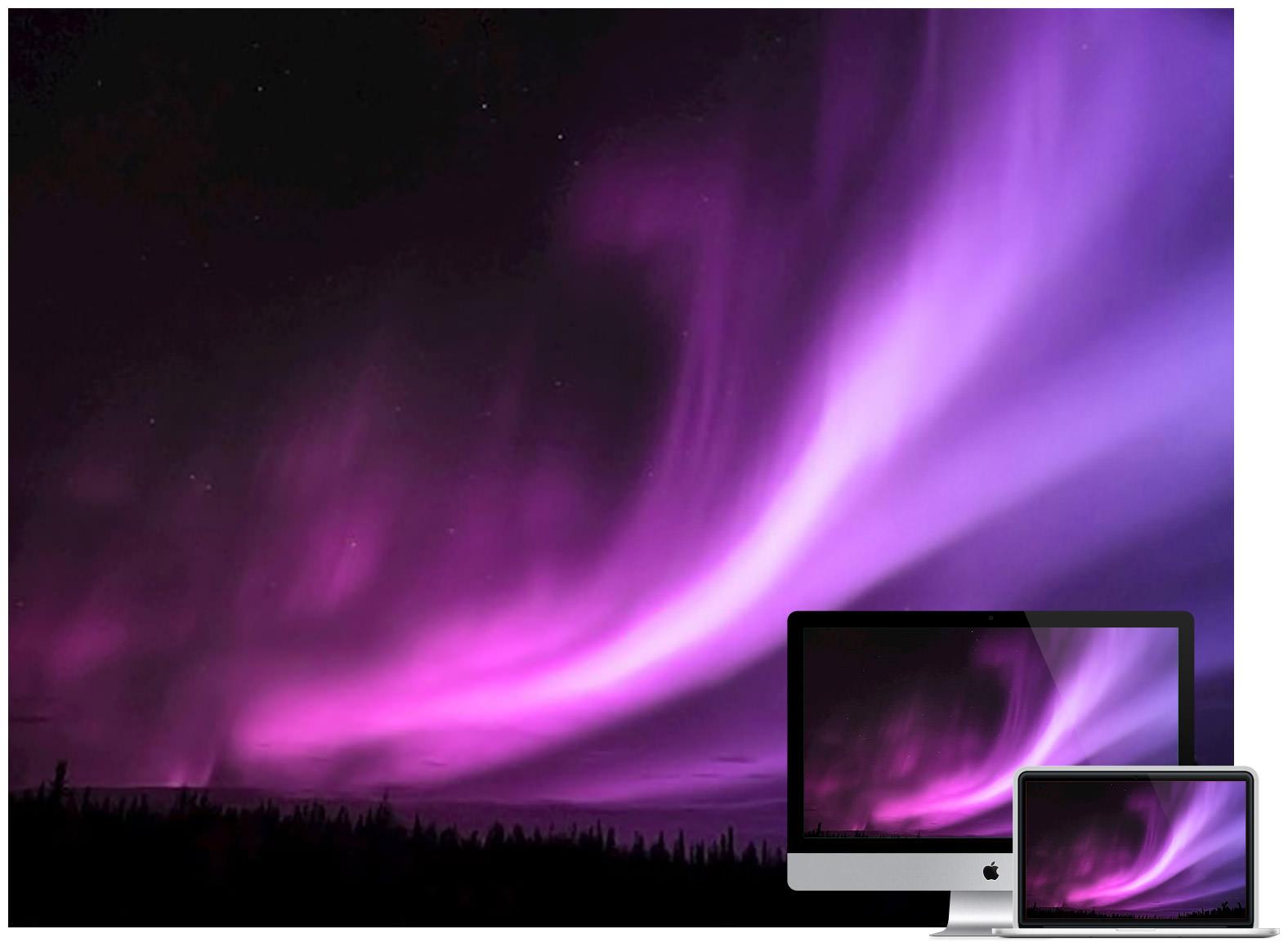 vivid-pink-borealis
