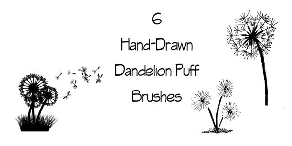 Dandelion Puff Brushes