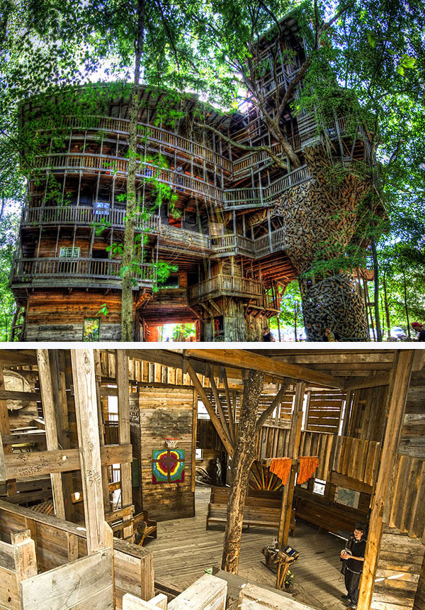 worlds biggest tree house by horace burgess - Biggest Treehouse In The World 2017