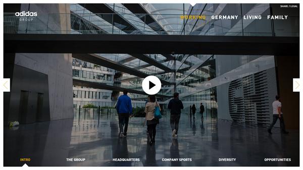 website intro video