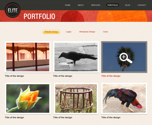 biz portfolio page
