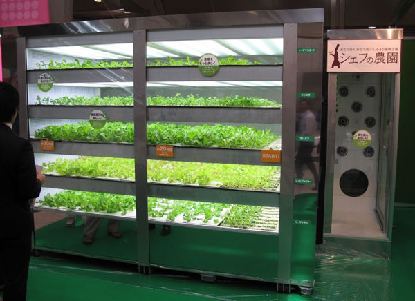 lettuce-vending-machine