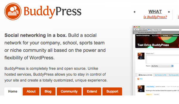 BuddyPress website layout circa 2009 2010