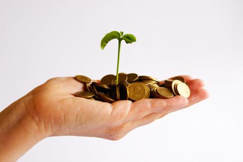 financial grow
