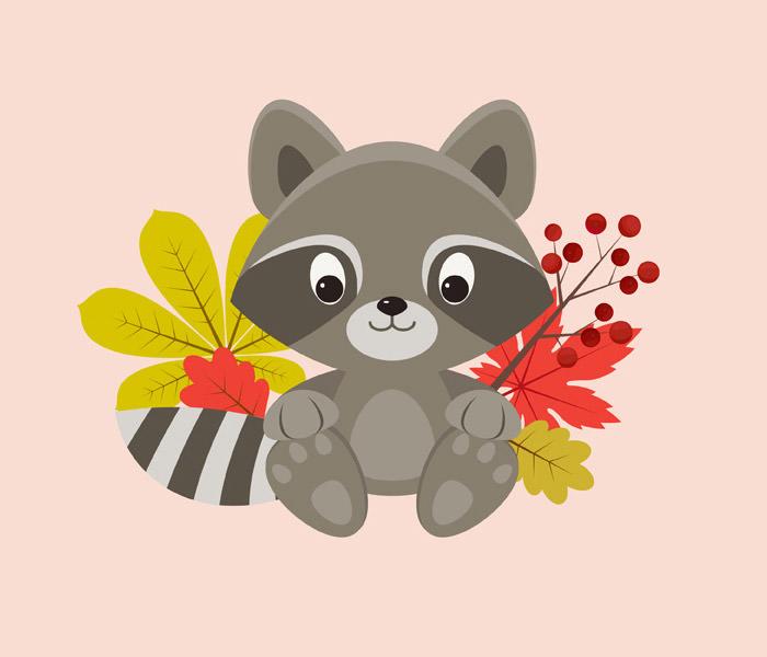 raccoon-character