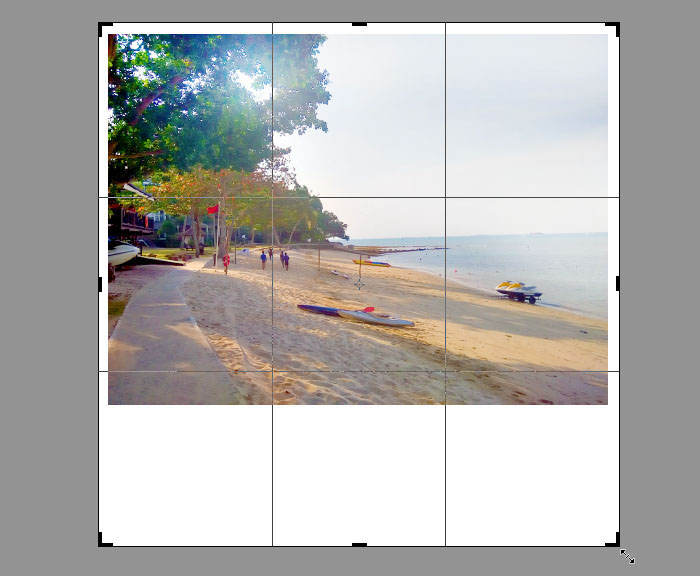 Expand Canvas with Crop Tool