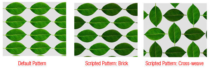 Scripted Pattern