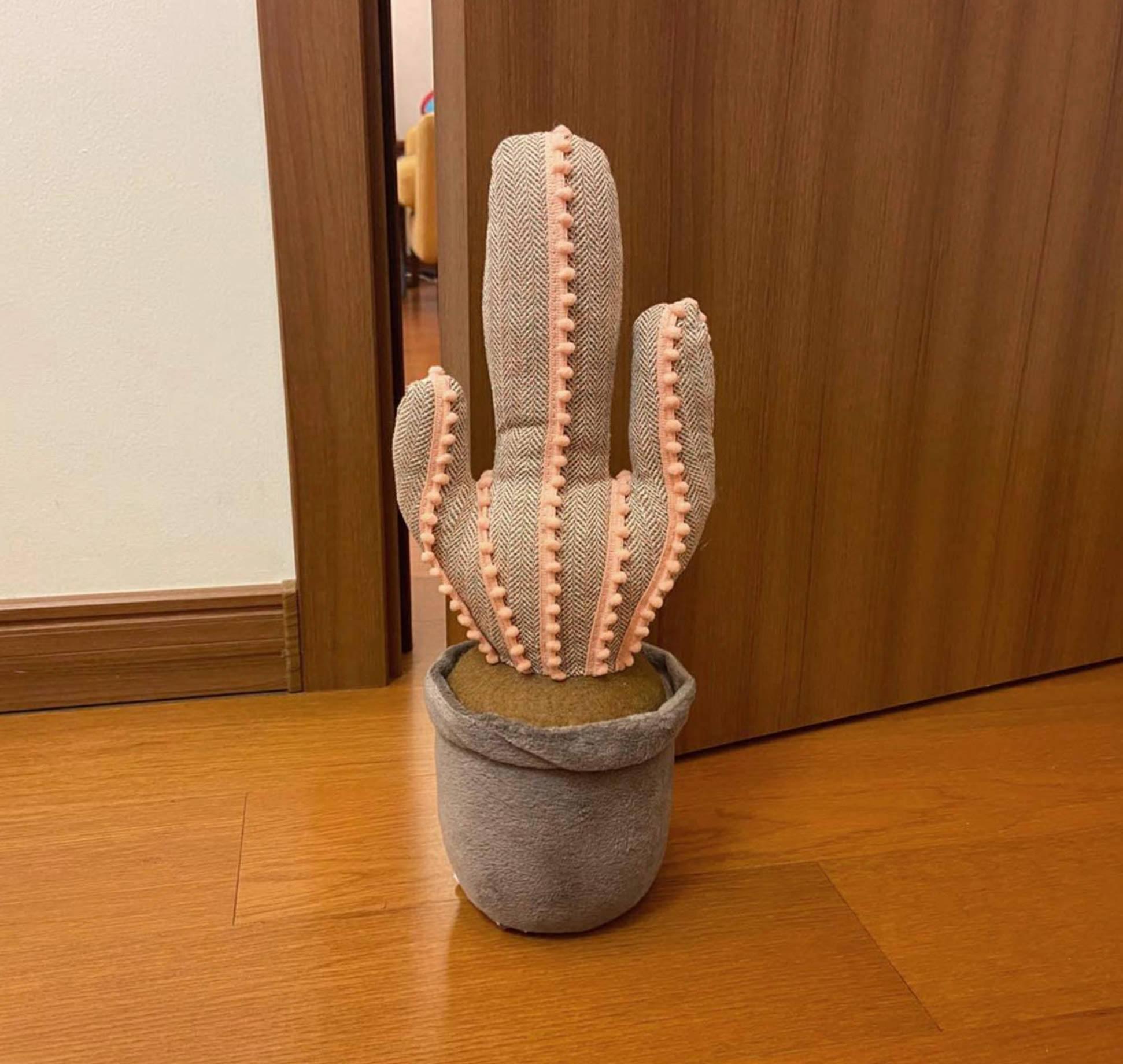 Decorative Cactus Door Stop