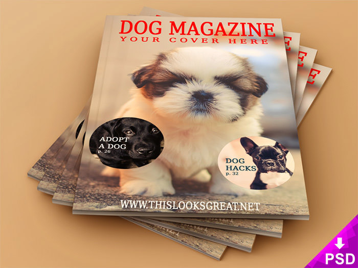 animal-magazine