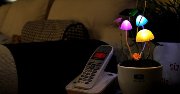 Solar Mushroom Lamp - Avatar Plant Flowers Night Light