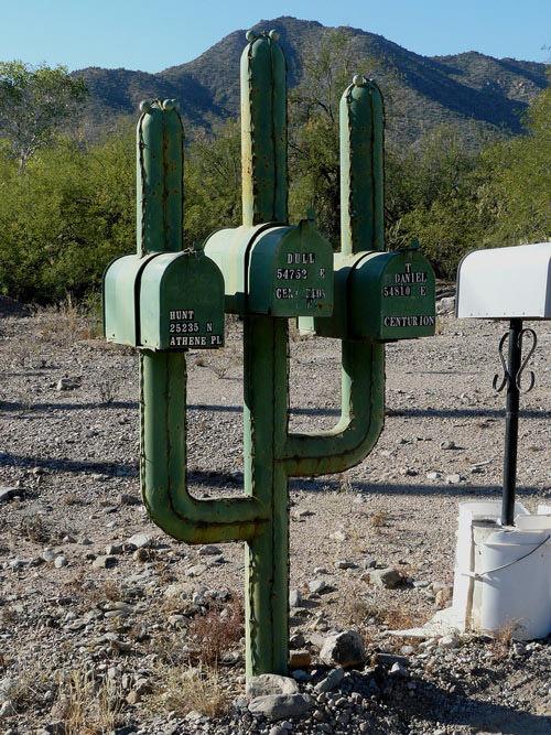Creative Cactus Mailbox