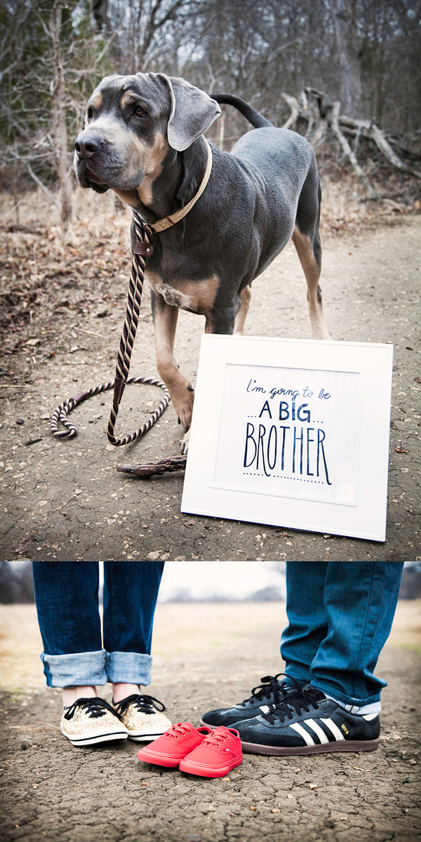 20 Creative Ways to Announce Pregnancy PHOTOS Hongkiat – Ideas to Announce Baby