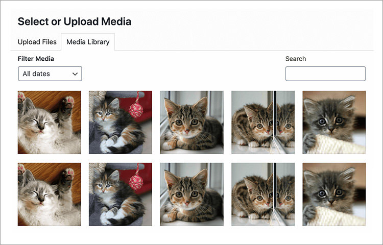 WordPress media library showing cat images