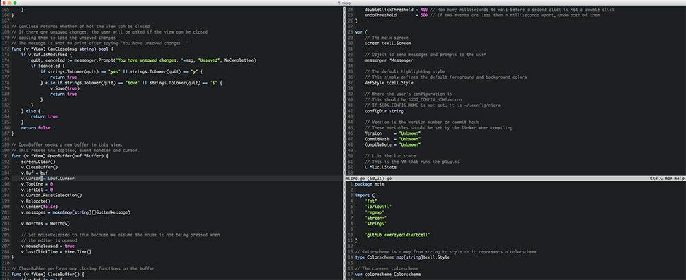 micro terminal ide editor