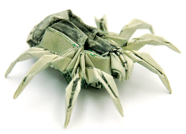 two dollar spider