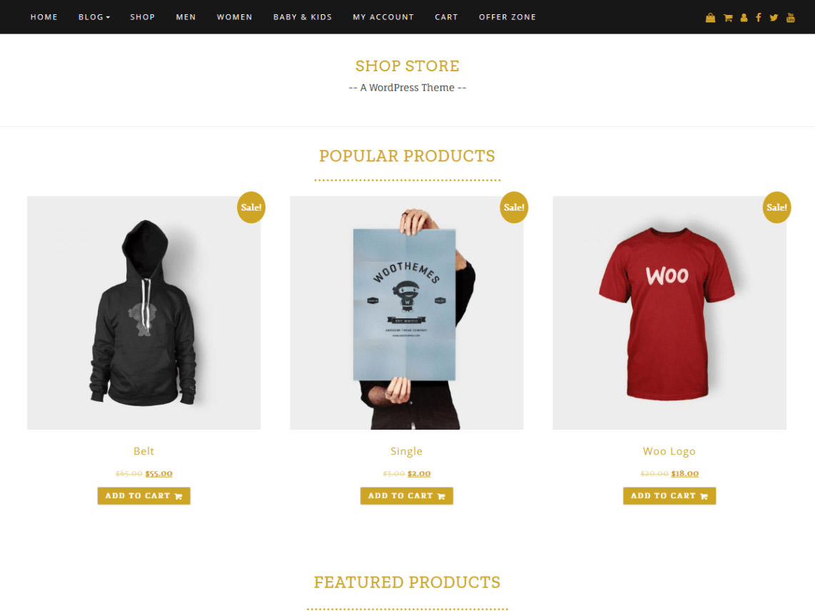 shop-store-wordpress-theme