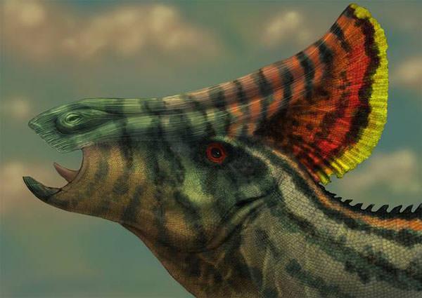 olorotitan dinosaur