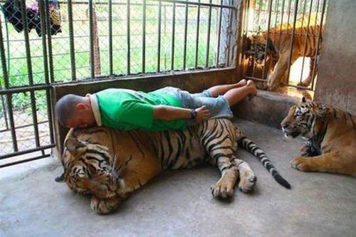 extreme planking