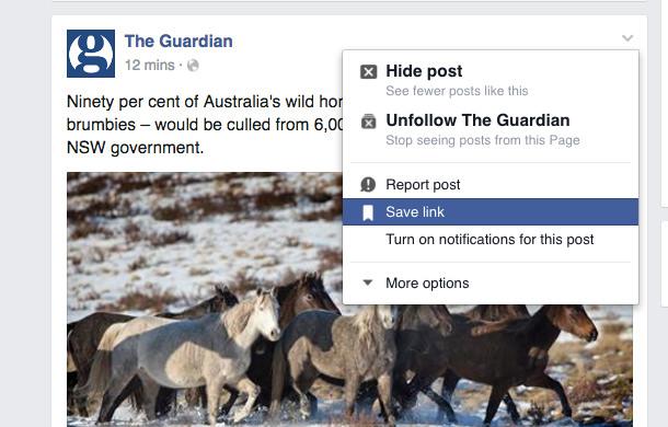 Facebook Save Link