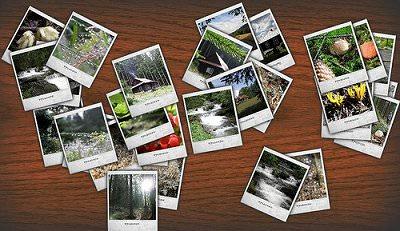 Flickr_AutoDownloadr