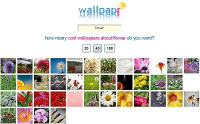 wallpapr