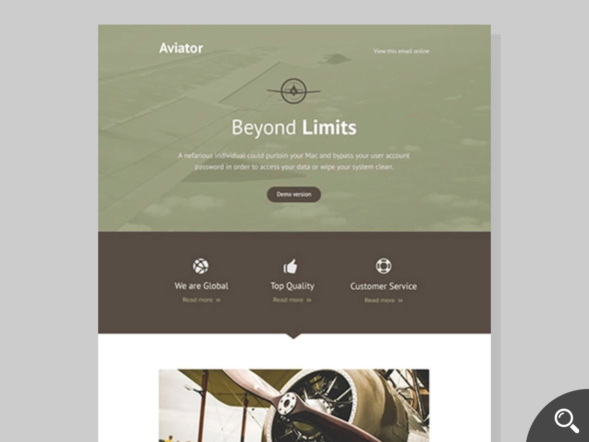 aviator newsletter template