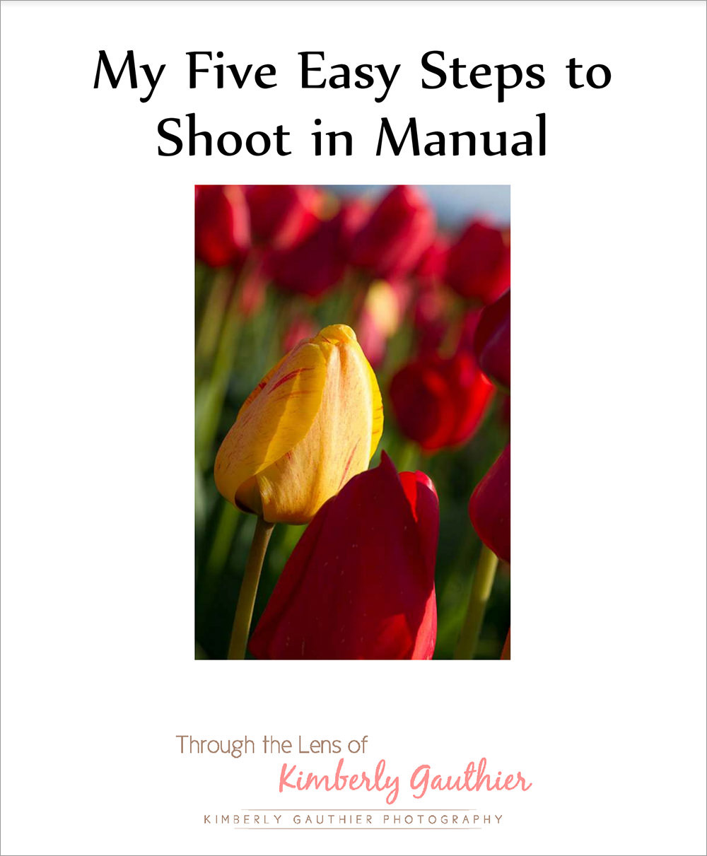 My-Five-Easy-Steps-to-Shoot-in-Manual