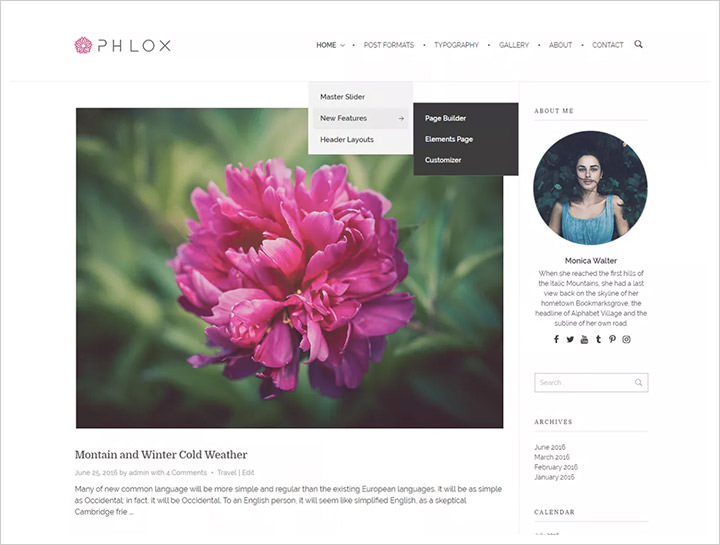 free professional wordpress themes