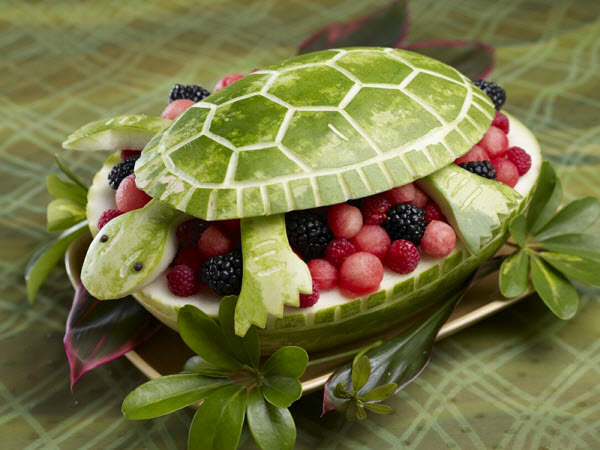 watermelon turtle