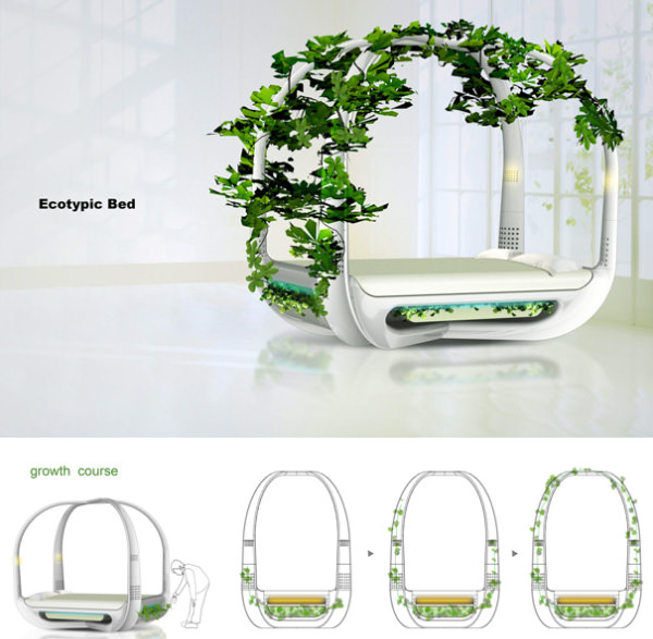 Ecotypic Bed