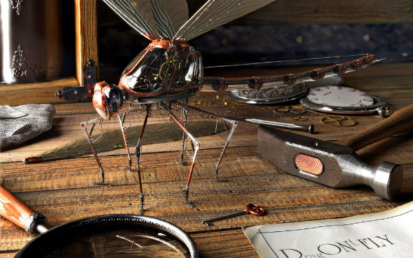 Insect Robot