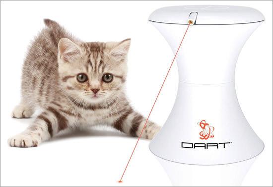 Dart Laser